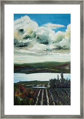 Wine Country 2 Framed Print by Martin Ruygrok