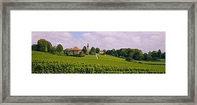 Wine Country With Buildings Framed Print by Panoramic Images