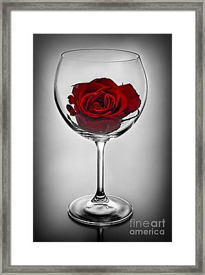 Wine Glass With Rose Framed Print by Elena Elisseeva