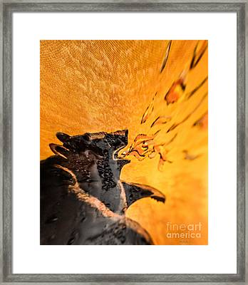 Wine Label Framed Print by Mitch Shindelbower