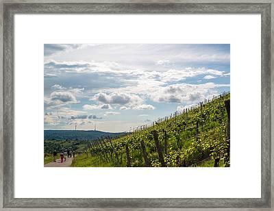 Wine Tour In Uhlbach Near Stuttgart - Germany Framed Print by Frank Gaertner