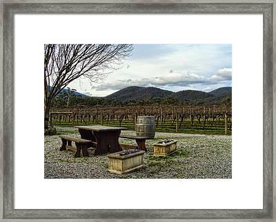Wine Yard Framed Print by Sanjeewa Marasinghe