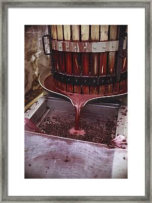 Winemaking Framed Print by Earl Roberge