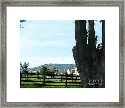 Framed Print featuring the photograph Winery by Bobbee Rickard