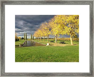 Winery Framed Print by Ron Torborg