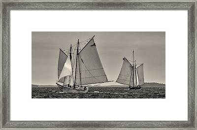 Wing And Wing Framed Print