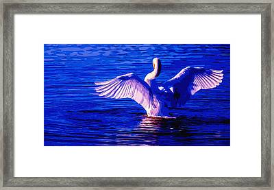 Wing Glow Framed Print by Brian Stevens
