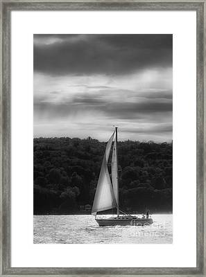Wing On Wing Framed Print