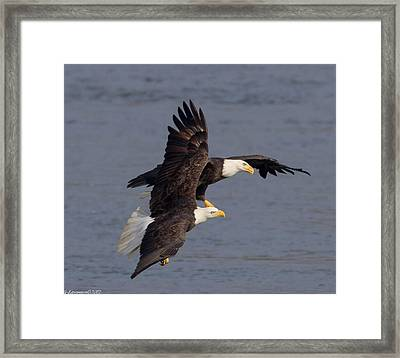 Wing Space  Framed Print by Glenn Lawrence