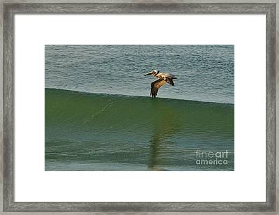Wing Surfer Framed Print