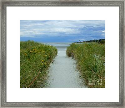 Wingaersheek Beach Path And Annisquam Lighthouse Framed Print