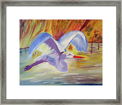 Winged Creation Framed Print