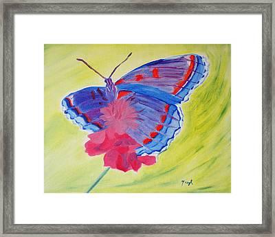 Winged Delight Framed Print