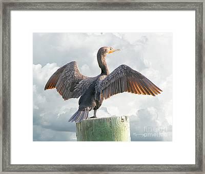 Winging It Framed Print by Mariarosa Rockefeller