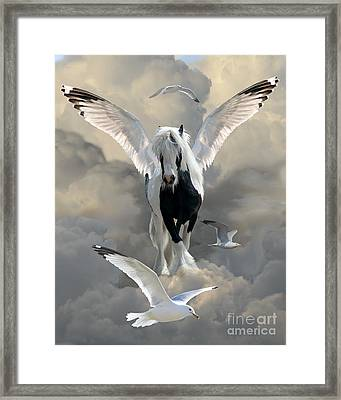 Wings And Feathers Framed Print by Judy Wood