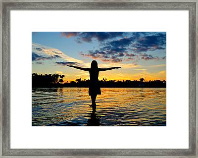 Wings Framed Print by Laura Fasulo