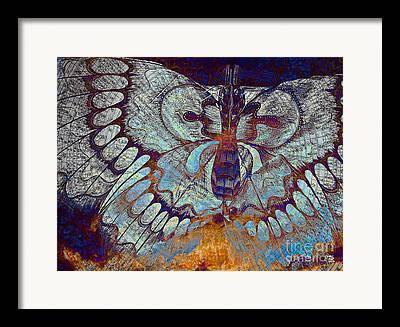 Artwork Of Butterfly Framed Prints