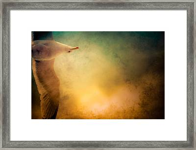 Wings Of Freedom Framed Print by Loriental Photography
