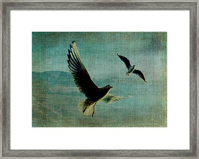 Wings Over The World Framed Print by Sarah Vernon