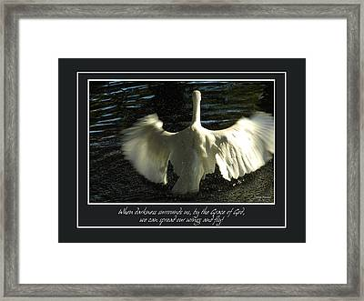 Wings To Fly Framed Print by Carolyn Marshall