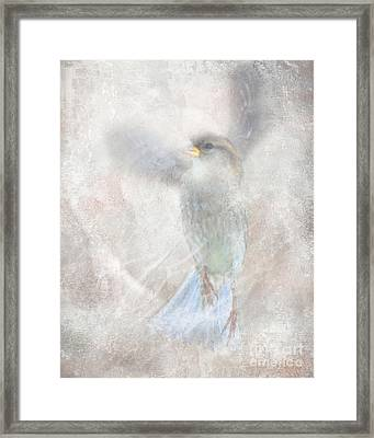 Wings Up Framed Print by Jim Wright