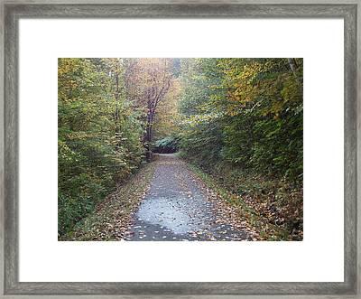 Winnipesaukee Trail Framed Print by Catherine Gagne