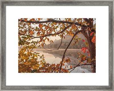 Winona Photograph Sugarloaf Through Leaves Framed Print