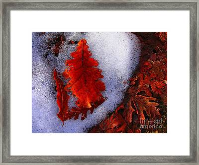 Winter 3  Framed Print by Vassilis Tagoudis