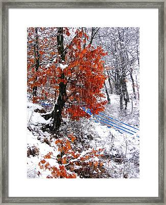 Winter 6 Framed Print by Vassilis Tagoudis