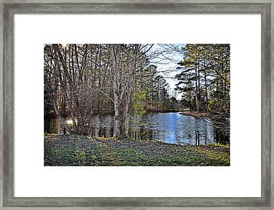 Winter Afternoon Framed Print