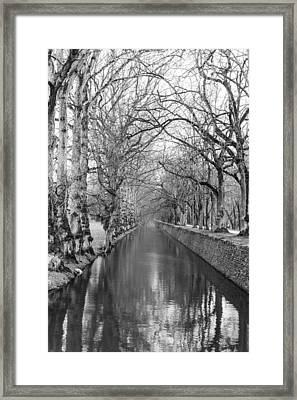 Winter Framed Print by Alex Lapidus