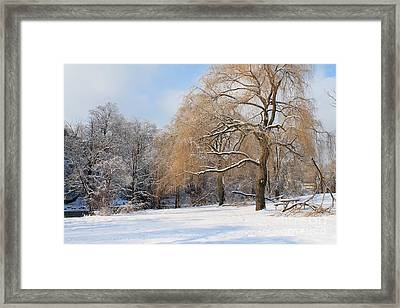 Framed Print featuring the photograph Winter Along The River by Nina Silver