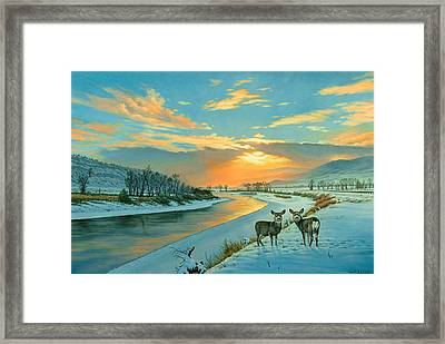 Winter Along The Yellowstone Framed Print by Paul Krapf