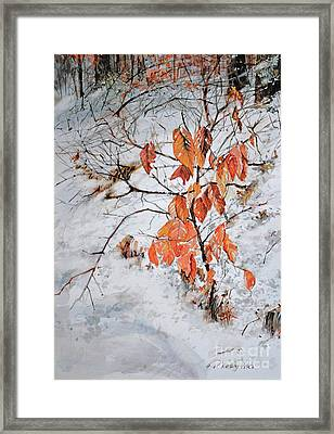 Winter Ash Framed Print
