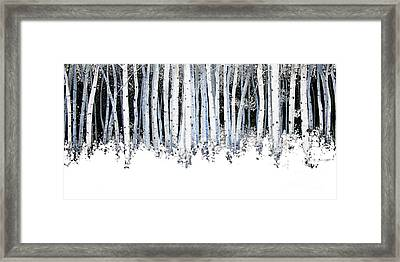 Winter Aspens  Framed Print by Michael Swanson