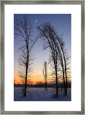 Winter At Dusk Framed Print