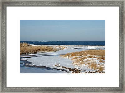 Winter At Hereford Inlet Framed Print