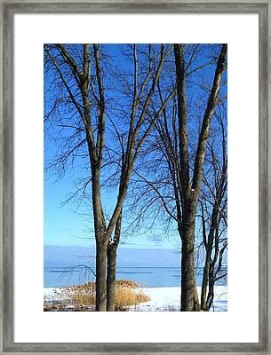 Winter At Lake Huron Framed Print by Rhonda Humphreys
