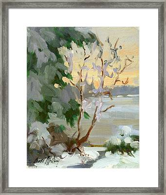 Winter At Martha Lake Framed Print by Diane McClary