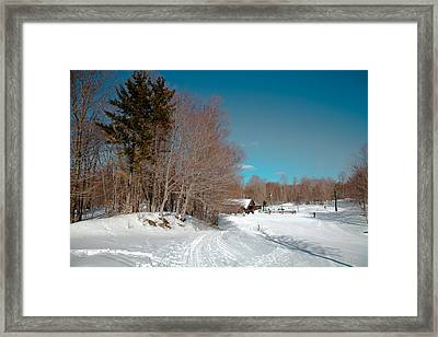 Winter At Mccauley Mountain IIi Framed Print by David Patterson