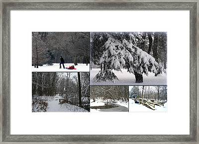 Framed Print featuring the photograph Winter At Petrifying Springs Park by Kay Novy