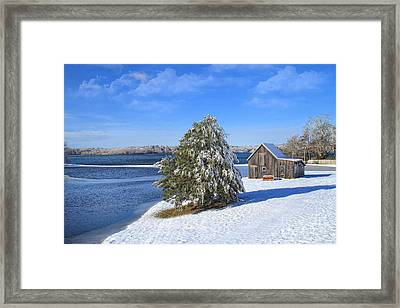 Winter At The Bog II Framed Print by Gina Cormier