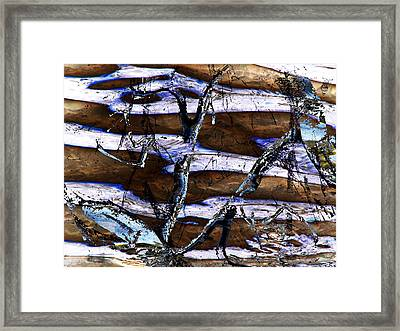 Framed Print featuring the digital art Winter by Aurora Levins Morales
