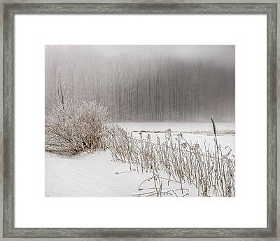 Winter Barbed Wire Fence Framed Print