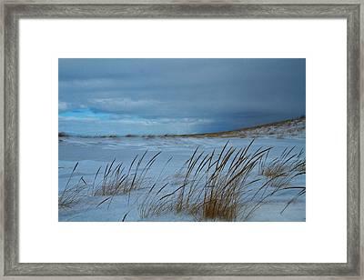 Winter Beach Framed Print by Dan Sproul