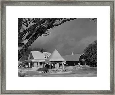 Winter Beauty Framed Print by Gene Cyr