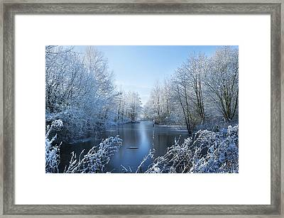 Winter Beauty Framed Print by Svetlana Sewell