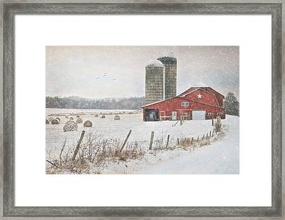 Winter Begins Framed Print by Lori Deiter