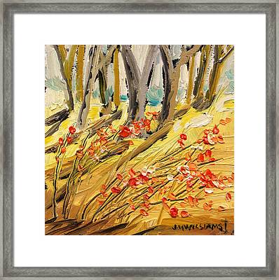 Winter Berries Framed Print by John Williams
