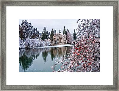 Winter Berries Framed Print by Nichon Thorstrom